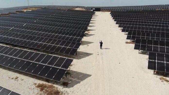 kerem çilli bifacial solar panellerle kurulmuş sahada çekim yapıyor